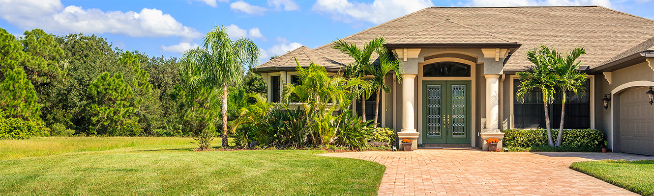 A home with palm trees and pine trees surrounding it.