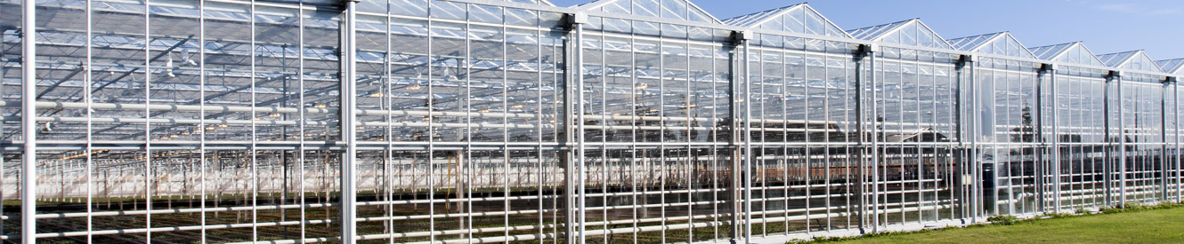 An industrial greenhouse on a sunny day.
